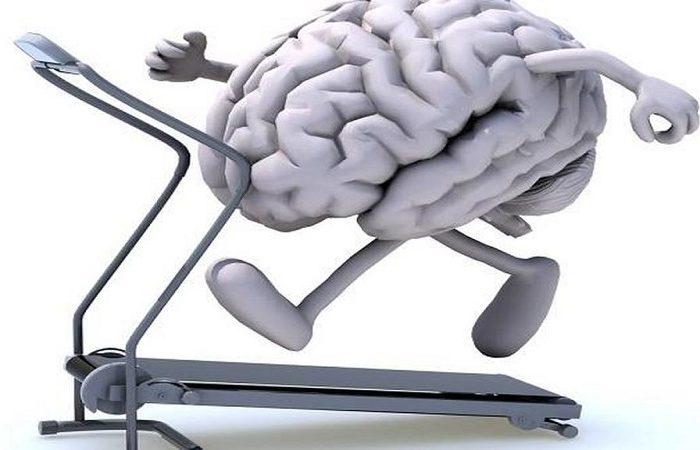 نقش ورزش در سلامت و تقویت مغز
